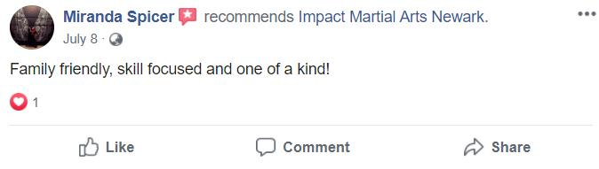 Adult1, Impact Family Martial Arts Newark OH